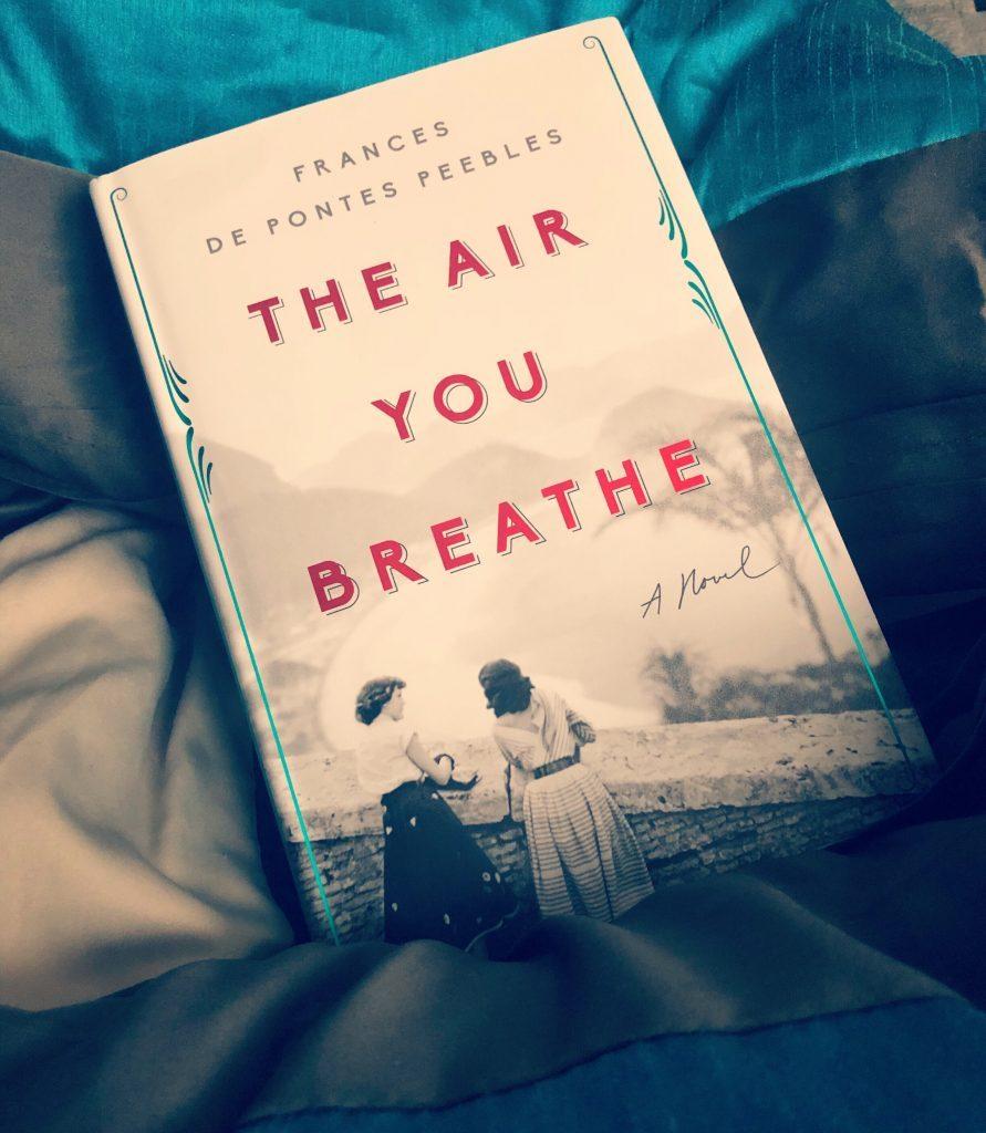 Novel The Air You Breathe
